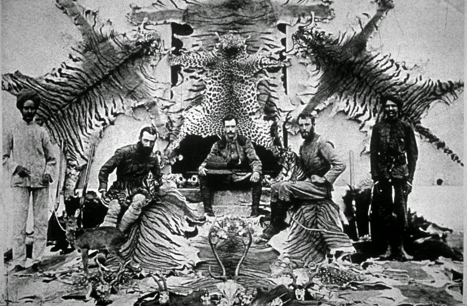 Británicos cazando tigres en la India colonial